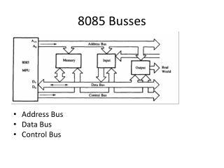 8085 Busses