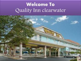 Quality inn clearwater,