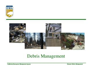 Disaster Debris Management