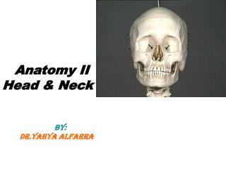 Anatomy II          Head & Neck            BY:            DR.Yahya Alfarra