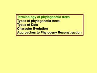 Terminology of phylogenetic trees Types of phylogenetic trees Types of Data Character Evolution Approaches to Phylogeny