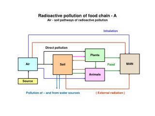 Radioactive pollution of food chain -  Air - soil pathways of radioactive pollution