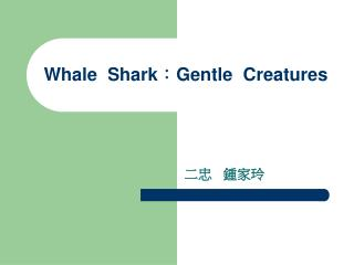 Whale  Shark : Gentle  Creatures