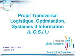 Projet Transversal Logistique, Optimisation, Systèmes d'Information  (L.O.S.I.I.)