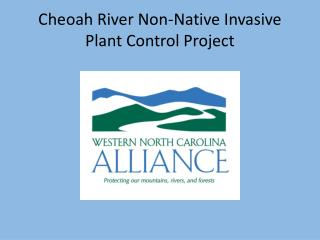 Cheoah River Non-Native Invasive Plant Control Project
