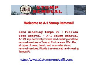 Land Clearing Tampa FL | Florida Tree Removal - A-1 Stump Re