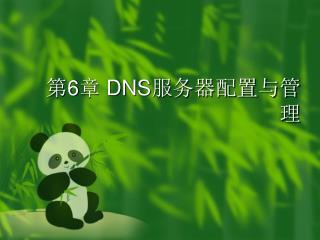 ? 6 ?  DNS ????????