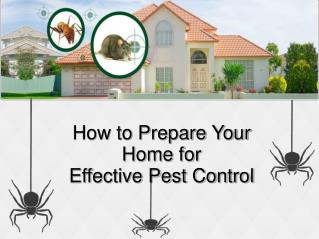 How to Prepare Your Home for Effective Pest Control