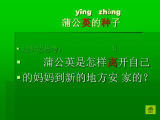 yīng   zhǒng 蒲公 英 的 种 子