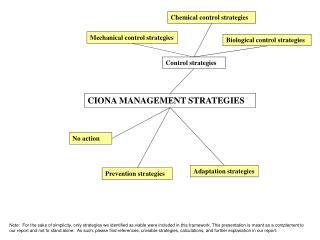 CIONA MANAGEMENT STRATEGIES