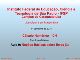 Cálculo Numérico – CN  Prof. Lineu Mialaret  Aula 9:  Noções Básicas sobre Erros (3)