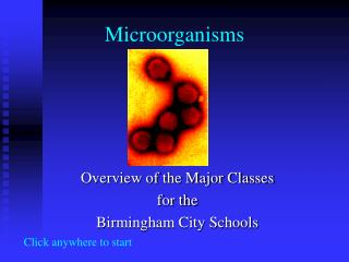 microorganisms in air Isolation of microorganism from air atmosphere(the layer nearest to the earth) contains all major groups of microbes ranging from algae to the viruses microbes found in air- in addition to.