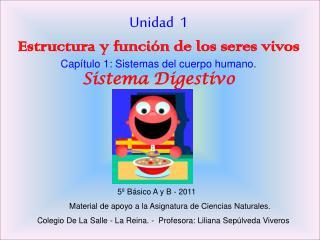 Unidad  1 Estructura y funci n de los seres vivos Cap tulo 1: Sistemas del cuerpo humano.  Sistema Digestivo