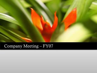 Company Meeting – FY07