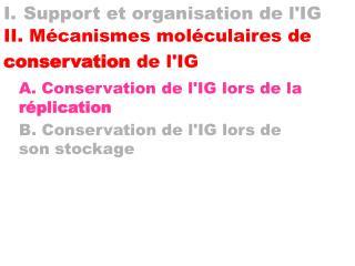 I. Support et organisation de lIG II. M canismes mol culaires de conservation de lIG