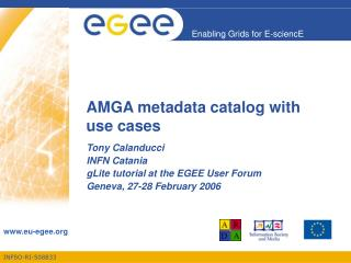 AMGA metadata catalog with use cases