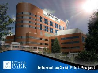 Internal caGrid Pilot Project