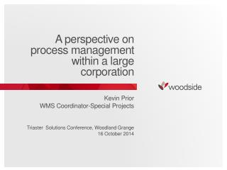 A perspective on process management within a large corporation