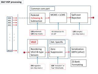 SALT DSP  processing