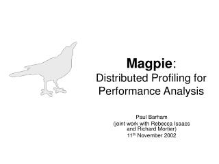 Magpie :  Distributed Profiling for Performance Analysis