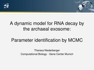 A dynamic model for RNA decay by the archaeal exosome: Parameter identification by MCMC