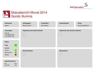 Statusbericht  Monat  2014 Gondo  Illumnia