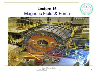 Lecture 16 Magnetic Fields& Force