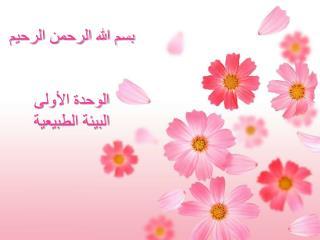 بسم الله الرحمن الرحيم الوحدة الأولى  البيئة الطبيعية