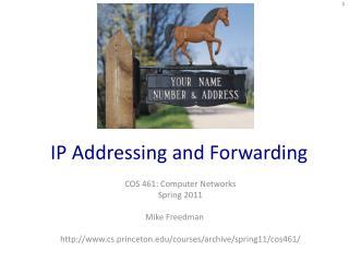 IP Addressing and Forwarding