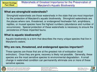 Stream Ecology Fact Sheet