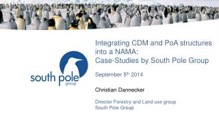 Integrating CDM and PoA structures into a NAMA: Case-Studies by South  Pole  Group