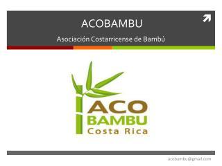ACOBAMBU Asociación Costarricense de Bambú