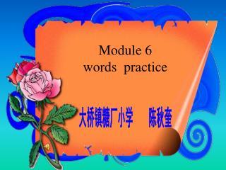 Module 6  words  practice