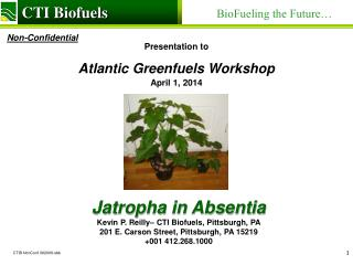 Presentation to Atlantic Greenfuels Workshop July 27, 2012