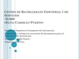Centro de Bachillerato Industrial y de Servicios  No200 �Elvia Carrillo Puerto�