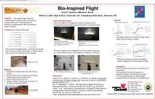 Bio-Inspired Flight