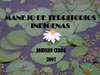 JOHNSON CERDA 2007