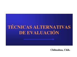 TÉCNICAS ALTERNATIVAS DE EVALUACIÓN