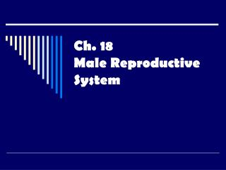 Ch. 18 Male Reproductive System