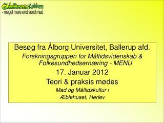 Besøg fra Ålborg Universitet, Ballerup afd.