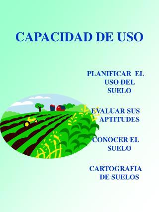 CAPACIDAD DE USO