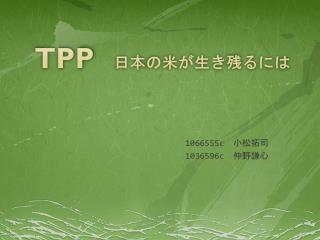 TPP 日本の米が生き残るには