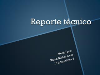 Reporte t�cnico
