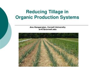 Reducing Tillage in  Organic Production Systems