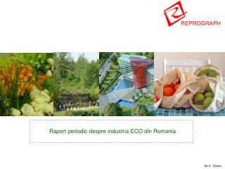 Raport periodic despre industria ECO din Romania