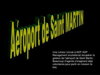 Aéroport de Saint MARTIN