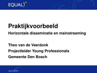 Praktijkvoorbeeld Horizontale disseminatie en mainstreaming Theo van de Veerdonk