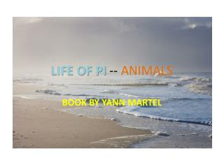 LIFE OF PI  --  ANIMALS