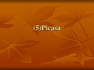 (5)Picasa