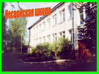 Несвойская школа